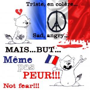Meme_SiteMarmotte2